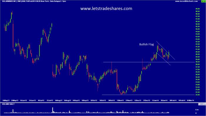 Chart 5. Solarwinds Inc (SWI)