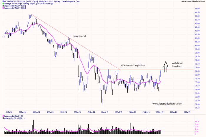 Woodside Petroleum (WPL)